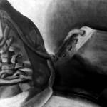 Zapatos dibujados con carboncillo y carbón prensado sobre papel por Diana Fuentes